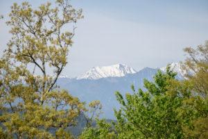 高津屋森林公園からの眺め