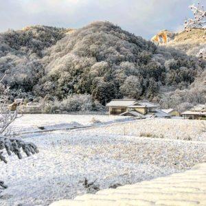 2019年初積雪